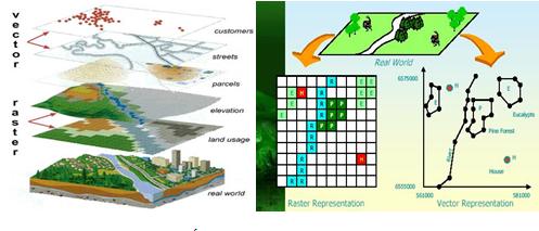 Dữ liệu vecter và raster phân tích và so sánh có gì khác nhau